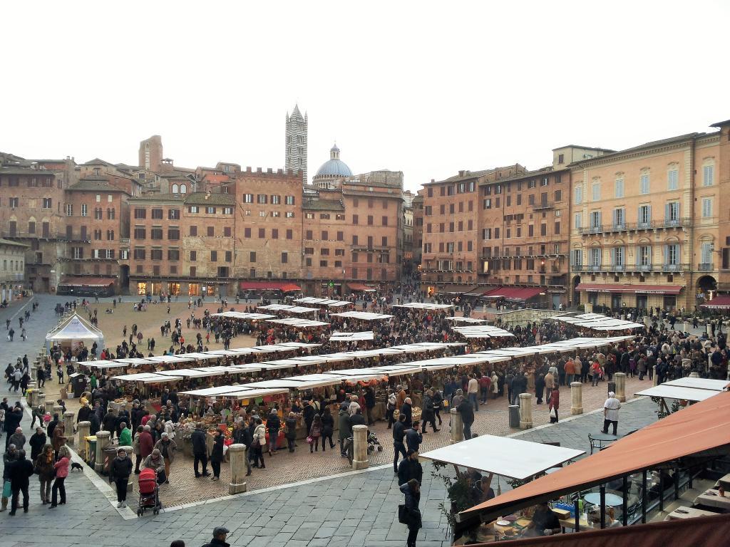 Mercato nel campo siena - Il mercato della piastrella moncalieri orari ...